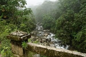 Manú.National.Park_